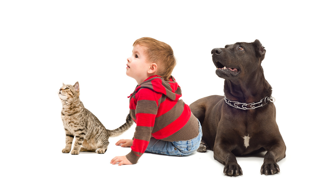 8 Surprising Home Dangers for Children and Pets